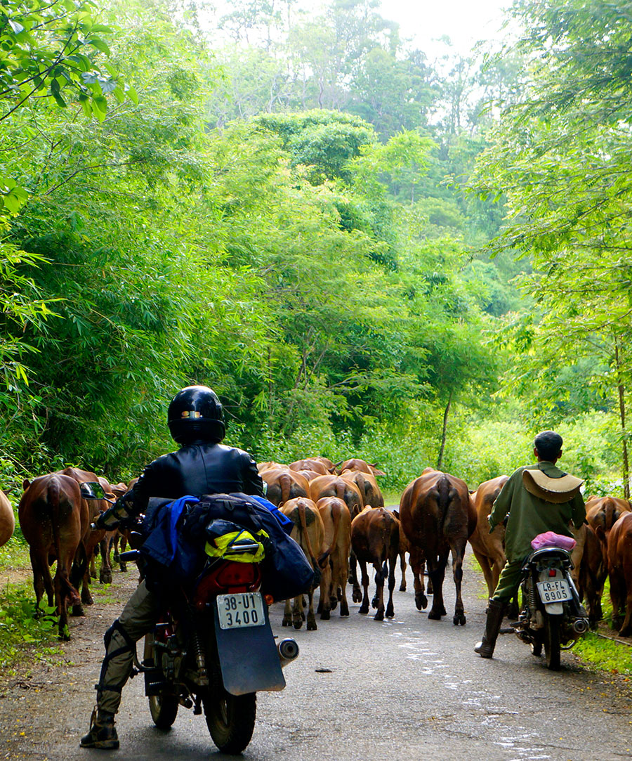 5 day motorcycle tour, Southern Vietnam highlands explore
