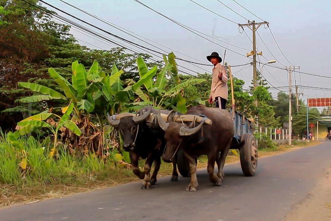 Cu Chi | Motorbike tour | Saigon Riders
