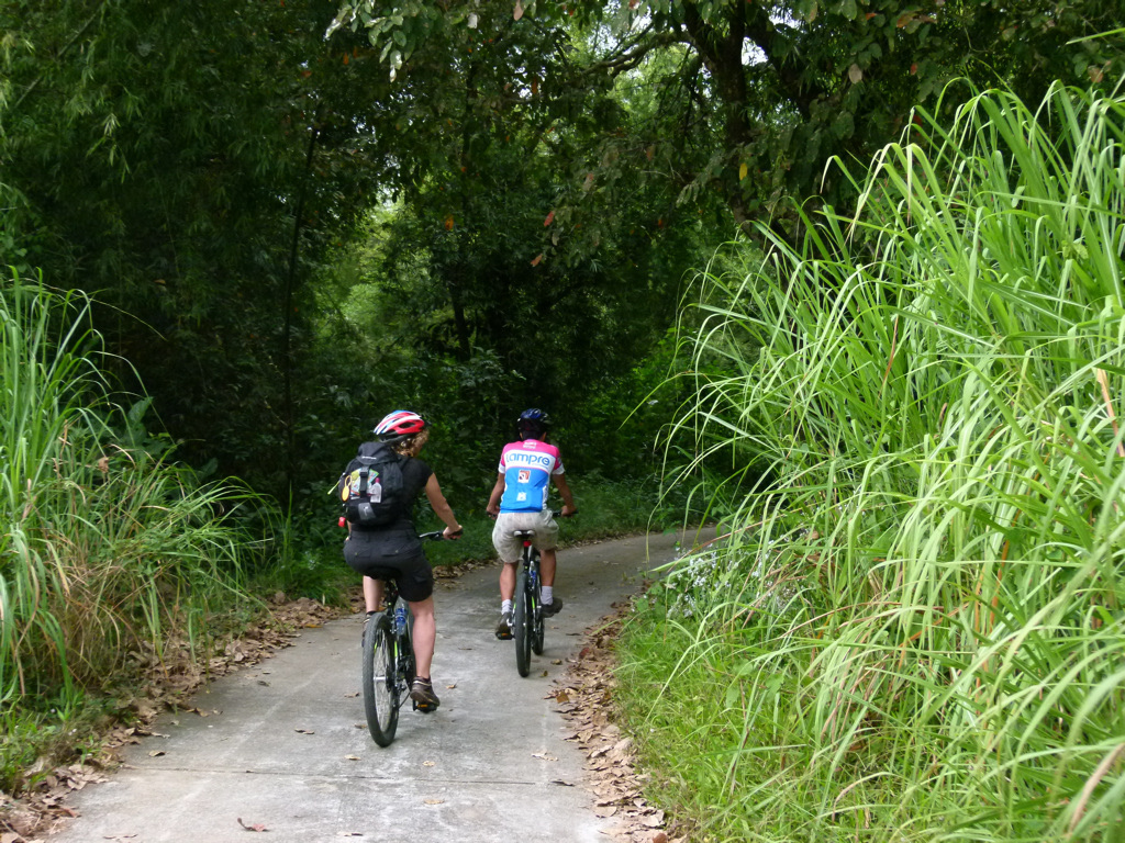 Riding a bike in the jungle is an awesome option to optimize your time exploring | Saigon Riders