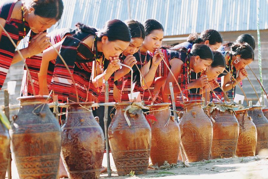 stem-wine-is-a-unique-culture-of-dalat