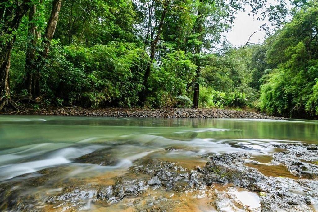 Bu Gia Map National Park is a hidden beauty