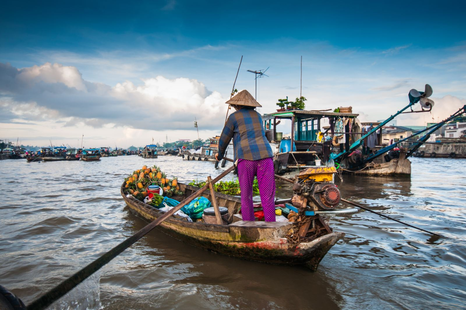 Riding in Mekong Delta 1 day tour to find out its harmony with the nature