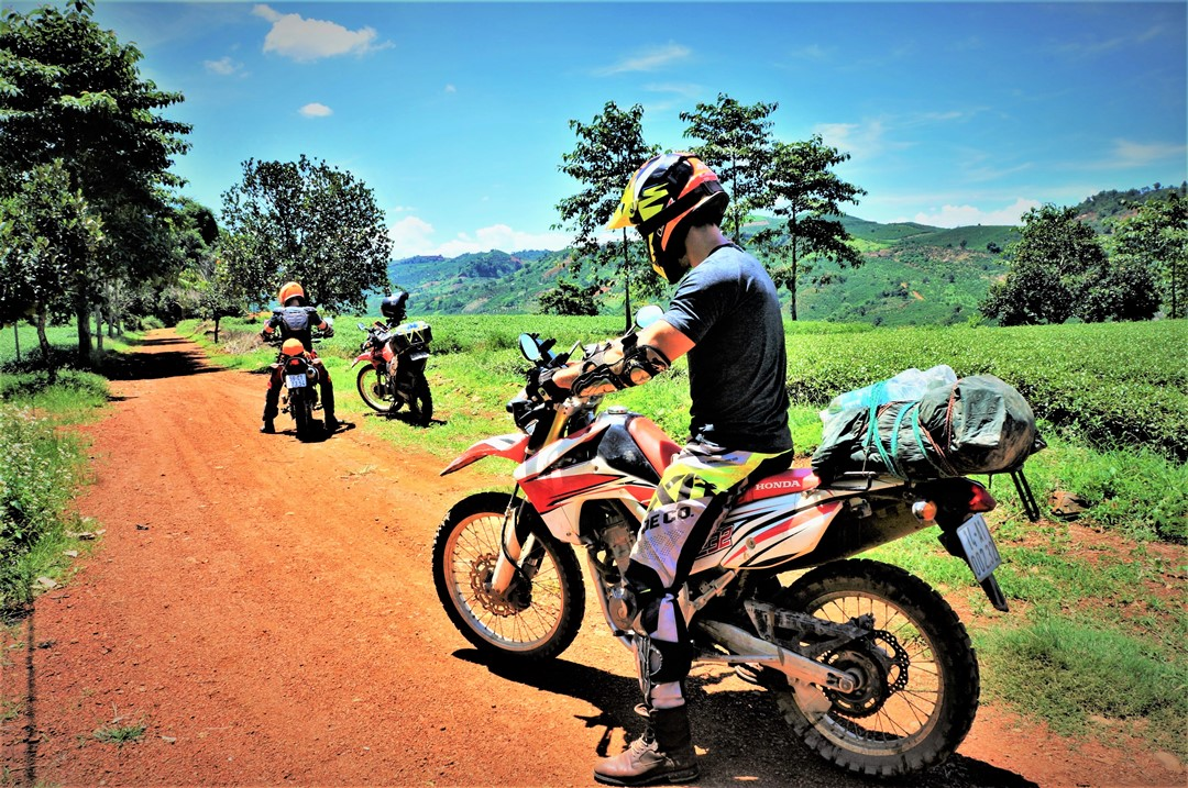 Choosing The Correct Oil For Your Dirt Bike